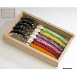 cuillere Jean Dubost, coffret 6 cuilleres,le Thiers acrylique