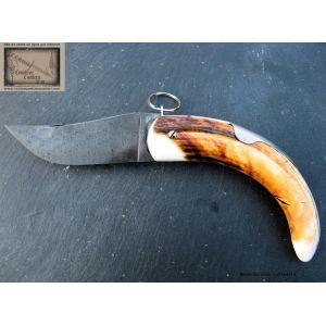 Cornillon Mongin, manche 16cm en ivoire phacochere brut, lame Damas